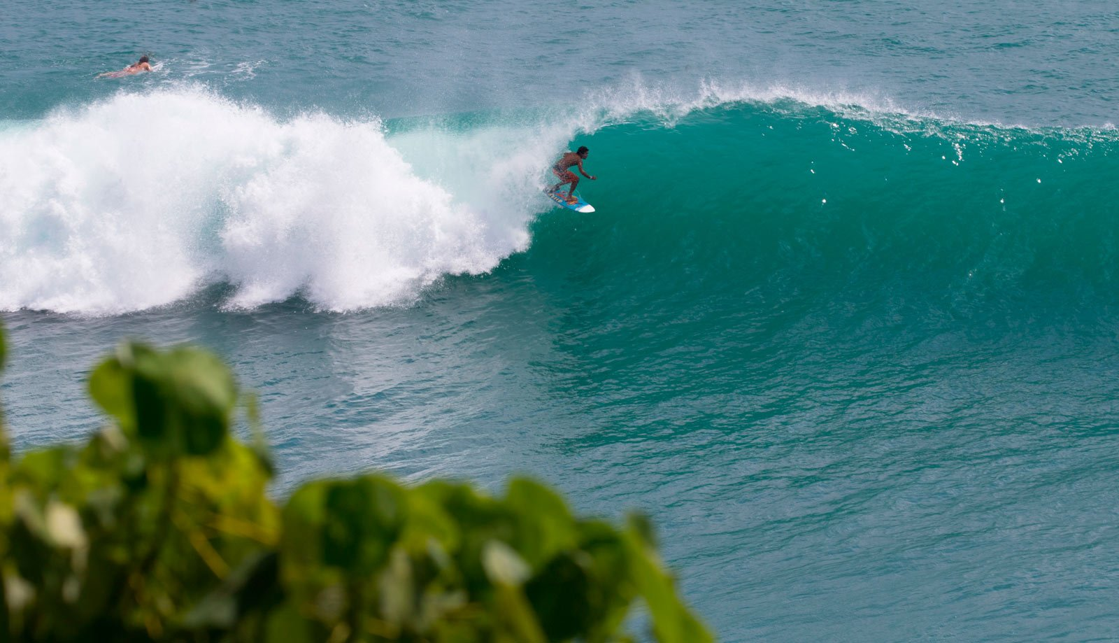 Swell bali Gallery